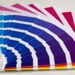 identidad corporativa: paleta de colores