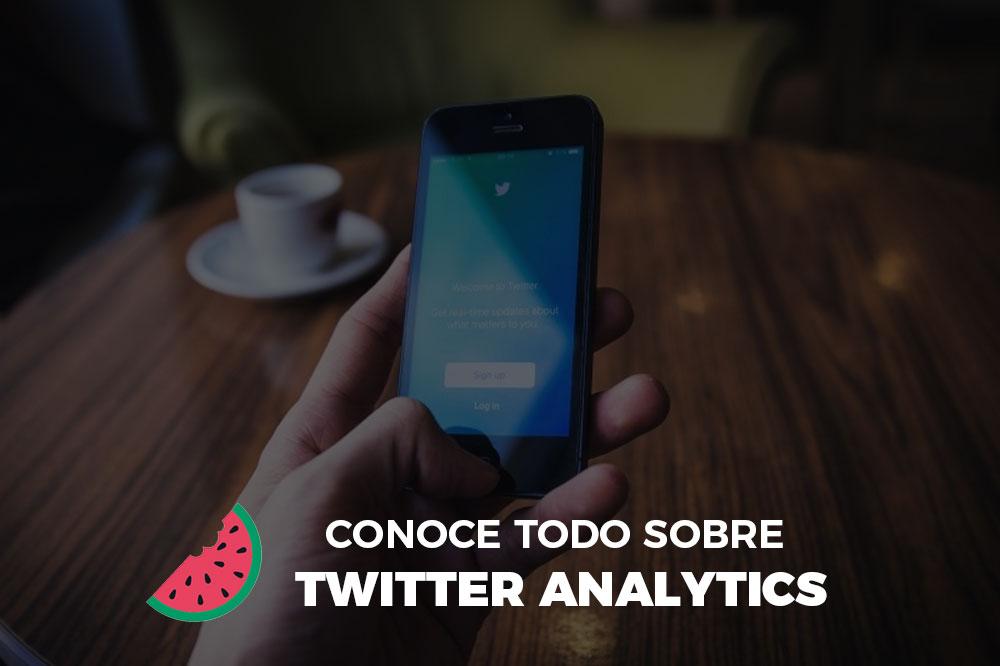 Herramienta Twitter Analytics